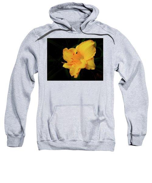 Isolation Sweatshirt