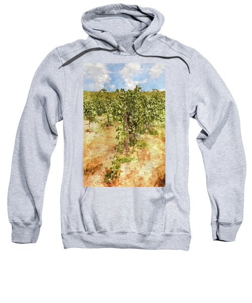 Napa Vineyard In The Spring Sweatshirt