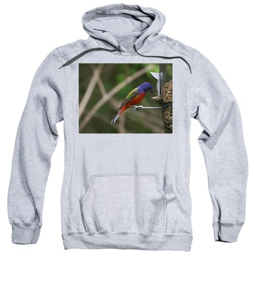 Painted Bunting Sweatshirt