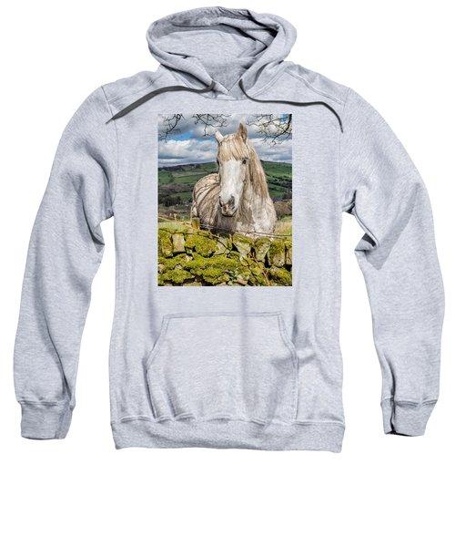 Rustic Horse Sweatshirt