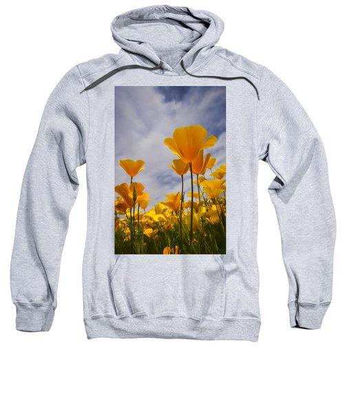 Springtime Poppies  Sweatshirt