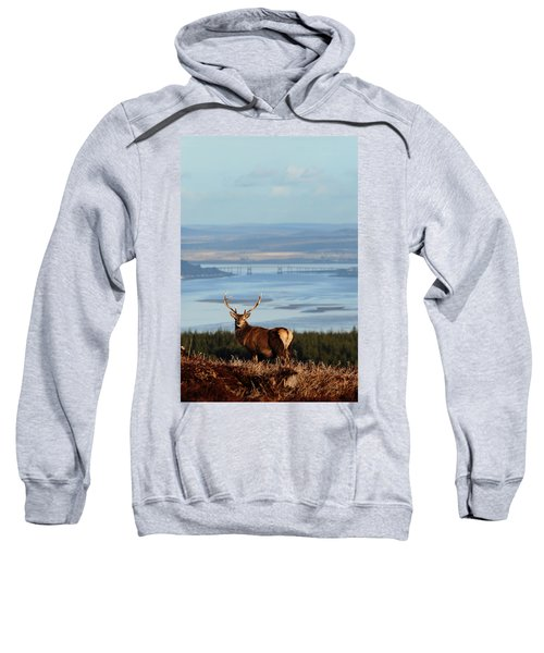 Stag Overlooking The Beauly Firth And Inverness Sweatshirt