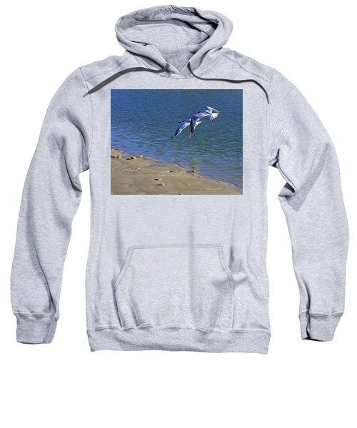 2 Terns In Flight Sweatshirt