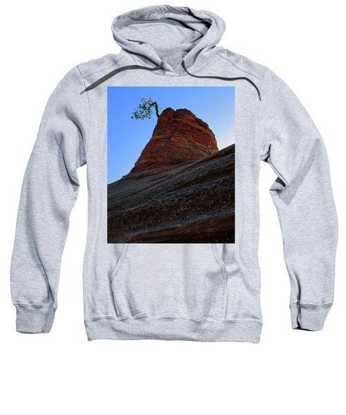 Tree Hoodoo Sweatshirt