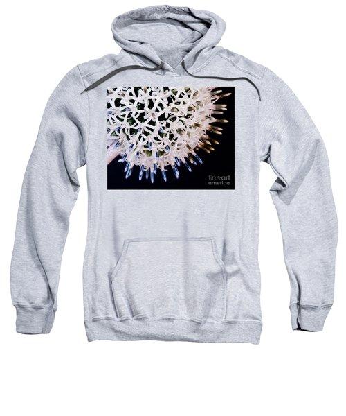 White Alium Onion Flower Sweatshirt