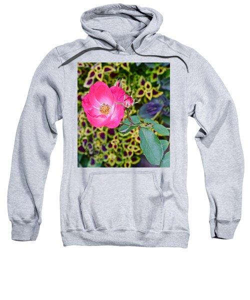 2015 Fall Equinox At The Garden Hello Fall Sweatshirt