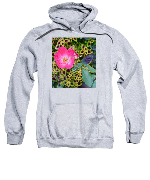 2015 Fall Equinox At The Garden Hello Fall Sweatshirt