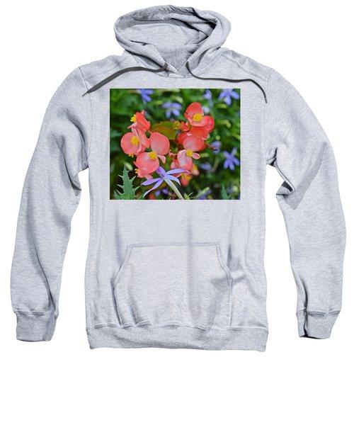 2015 Mid September At The Garden Begonias 2 Sweatshirt