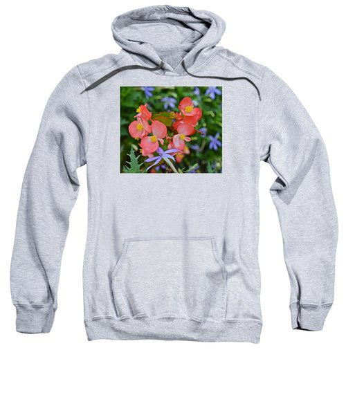2015 Mid September At The Garden Begonias 2 Sweatshirt