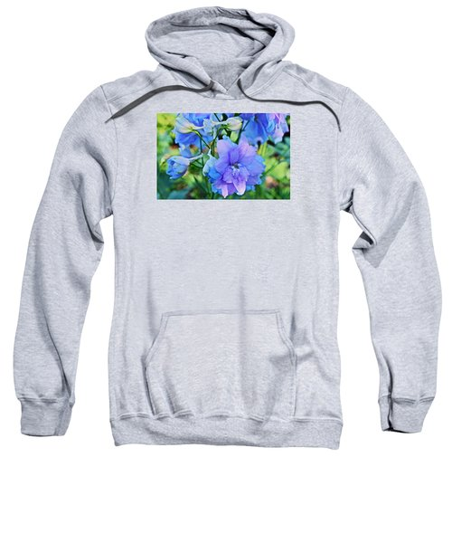 2015 Mid September At The Garden Larkspur 2 Sweatshirt