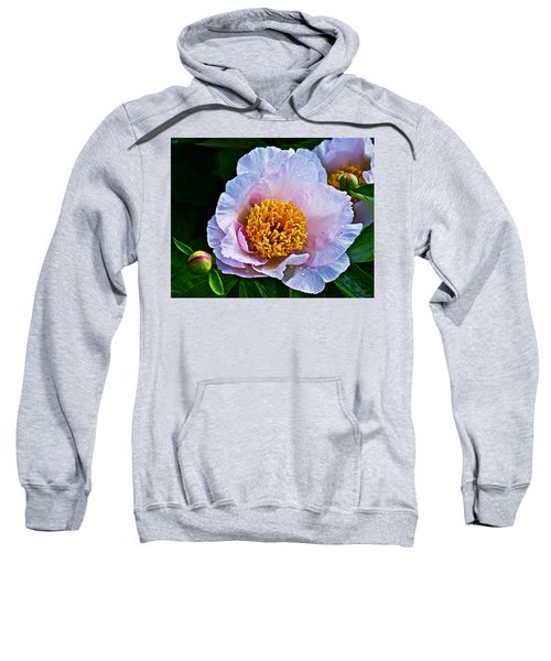 2015 Spring At The Garden White Peony  Sweatshirt