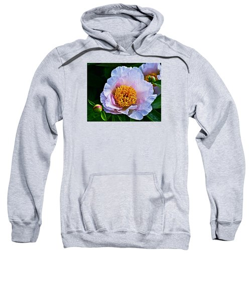 2015 Spring At The Garden White Peony  Sweatshirt