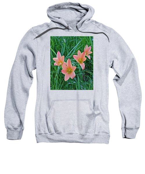 2015 Spring At The Gardens Meadow Garden Tulips 3 Sweatshirt