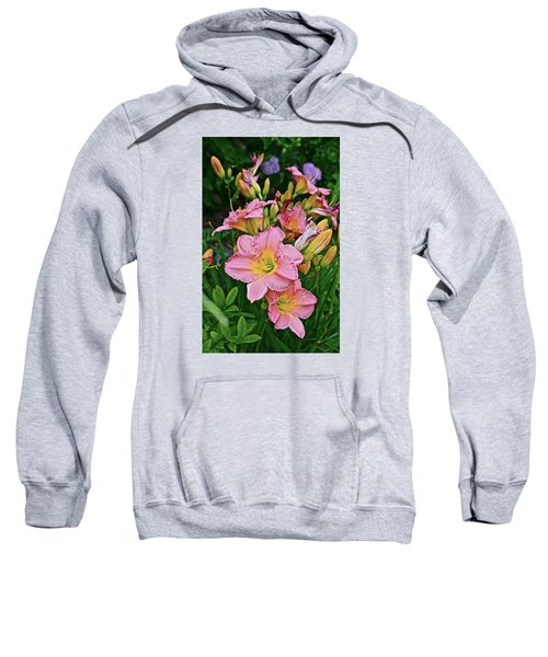 2015 Summer At The Garden Daylilies 1 Sweatshirt