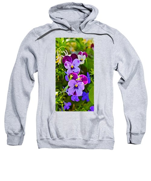 2015 Summer's Eve At The Garden Pansy Totem Sweatshirt