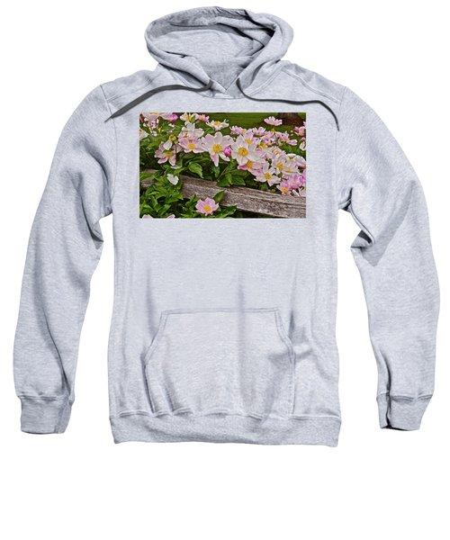 2015 Summer's Eve Neighborhood Garden Front Yard Peonies 3 Sweatshirt