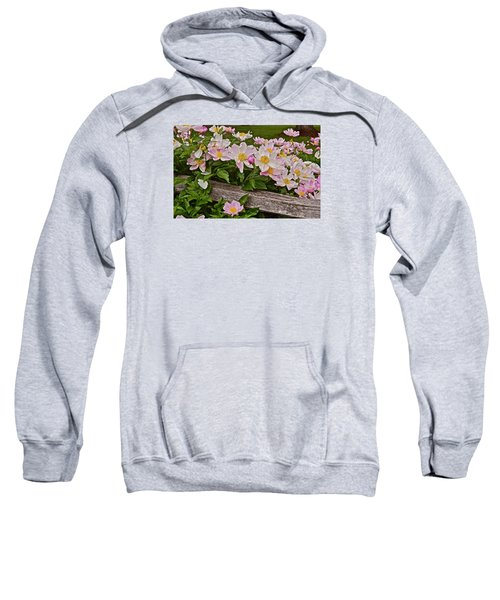 2015 Summer's Eve Neighborhood Garden Front Yard Peonies 3 Sweatshirt