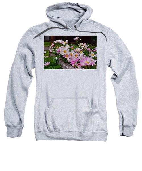 2015 Summer's Eve Neighborhood Garden Front Yard Peonies 4 Sweatshirt