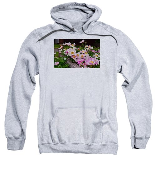 2015 Summer's Eve Neighborhood Garden Front Yard Peonies 4 Sweatshirt
