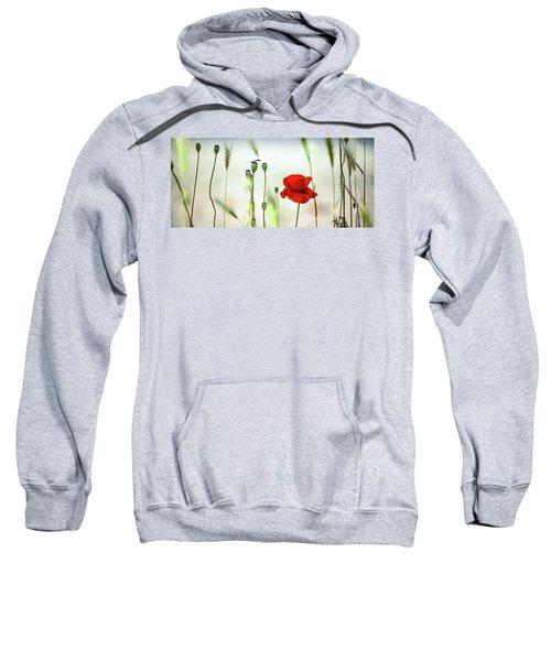 Summer Poppy Meadow Sweatshirt