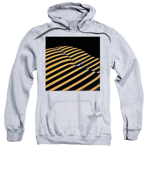 2612s-ak Abstract Rear Butt Bum Thighs Zebra Striped Woman In Composition Style Sweatshirt