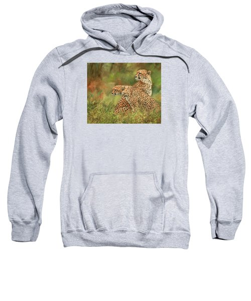 Cheetahs Sweatshirt by David Stribbling