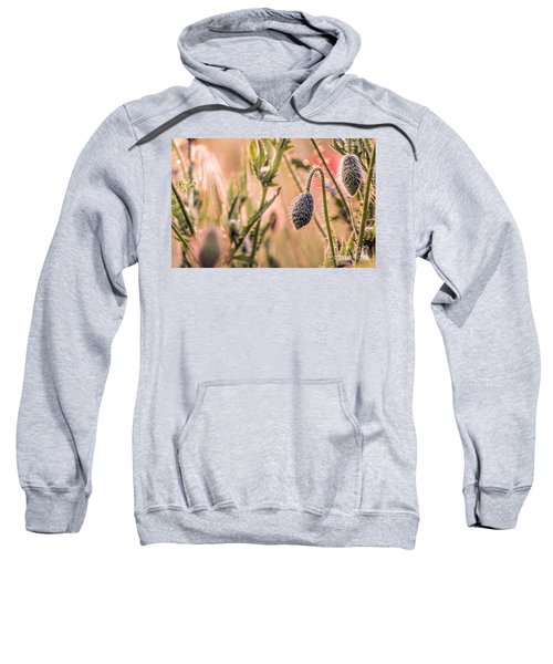 Poppy Flowers Sweatshirt