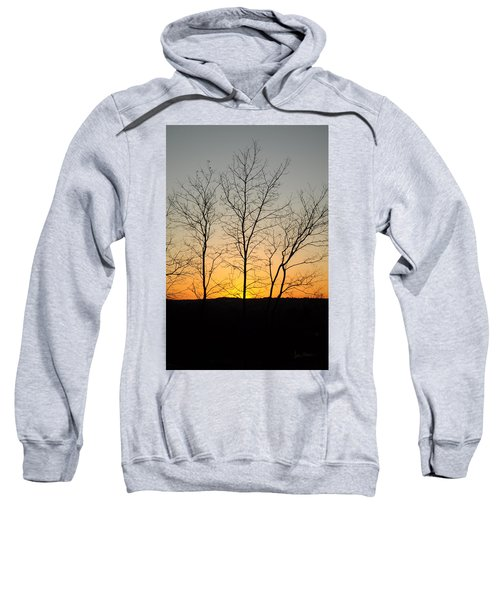 3 Trees Sweatshirt