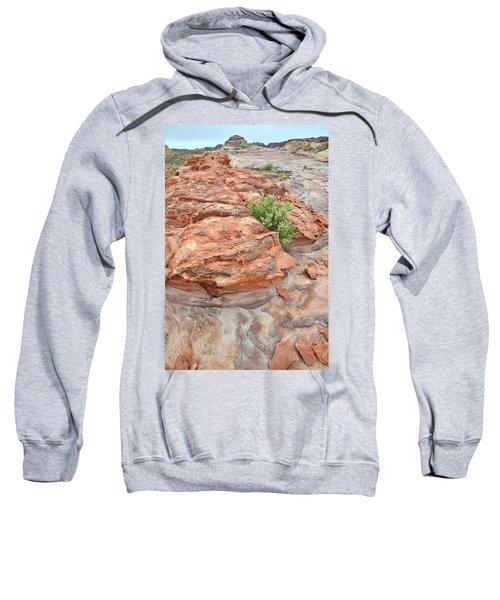 Colorful Sandstone In Valley Of Fire Sweatshirt