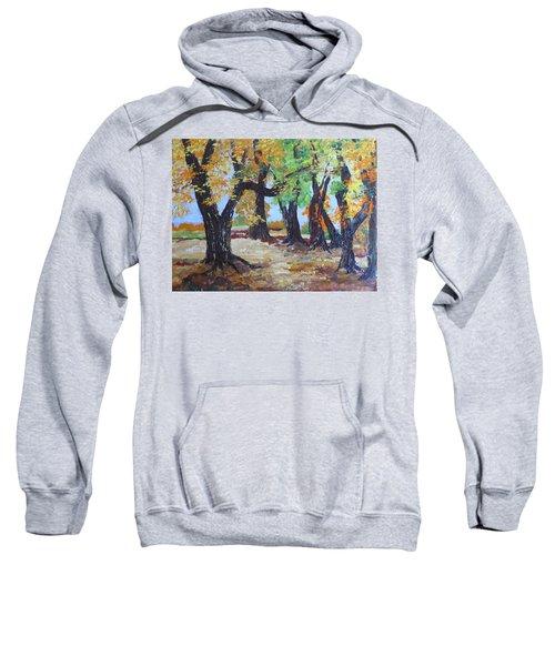 #35 Cottonwood Colors Sweatshirt