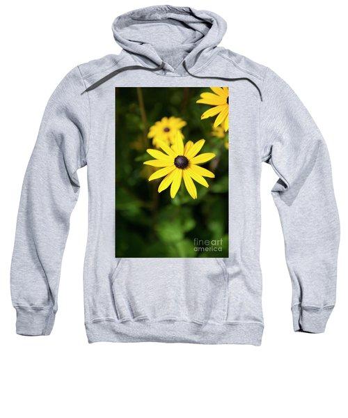 Fine Art Sweatshirt