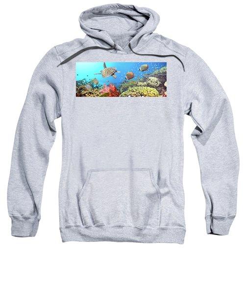 Underwater Panorama Sweatshirt
