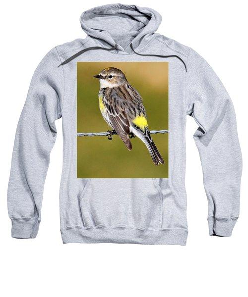 Yellow-rumped Warbler Sweatshirt