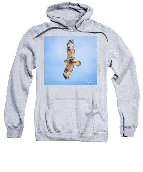 Rough-legged Hawk Sweatshirt
