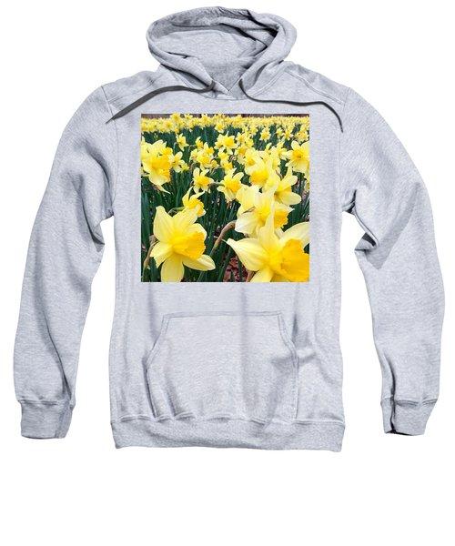 Angeline's Garden  Sweatshirt