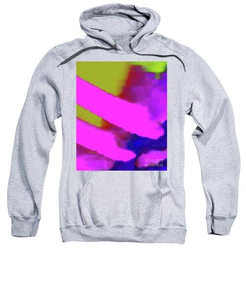 7-19-2015babcdefghijk Sweatshirt
