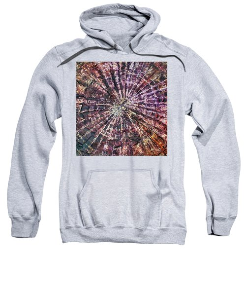 72-offspring While I Was On The Path To Perfection 72 Sweatshirt