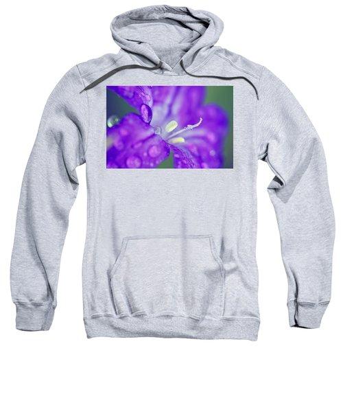 746 Sweatshirt