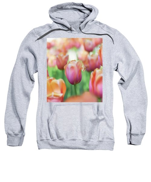 A Bed Of Tulips Is A Feast For The Eyes. Sweatshirt