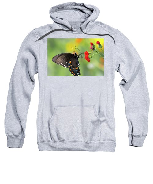 A Butterfly  Sweatshirt