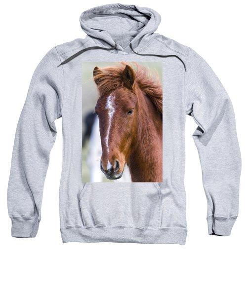 A Chestnut Horse Portrait Sweatshirt