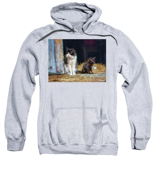 A Day In The Life Of A Barn Cat Sweatshirt