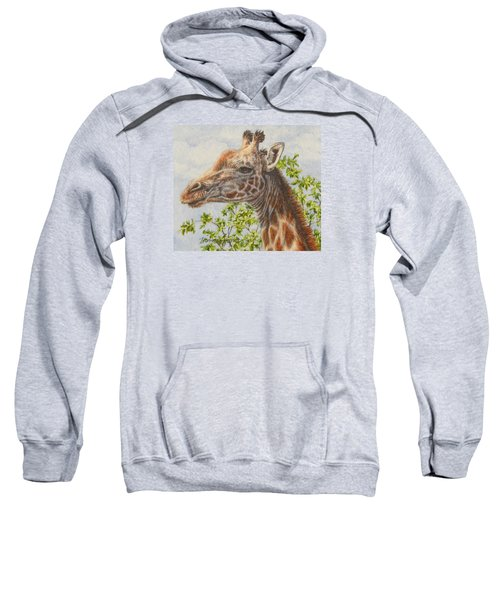 A Higher Point Of View Sweatshirt