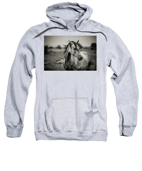 A Horse In Profile In Black And White Sweatshirt