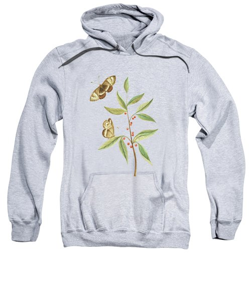 A Kanalla Branch With A Butterfly By Cornelis Markee 1763 Sweatshirt