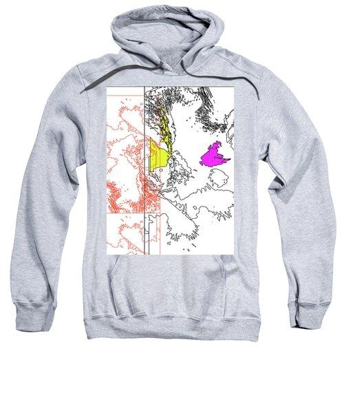 A Map Of Irises Sweatshirt