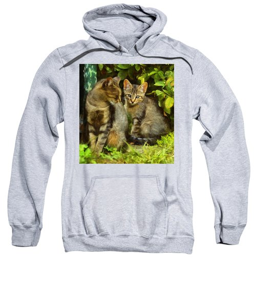 A Pair Of Feral Cats Sweatshirt