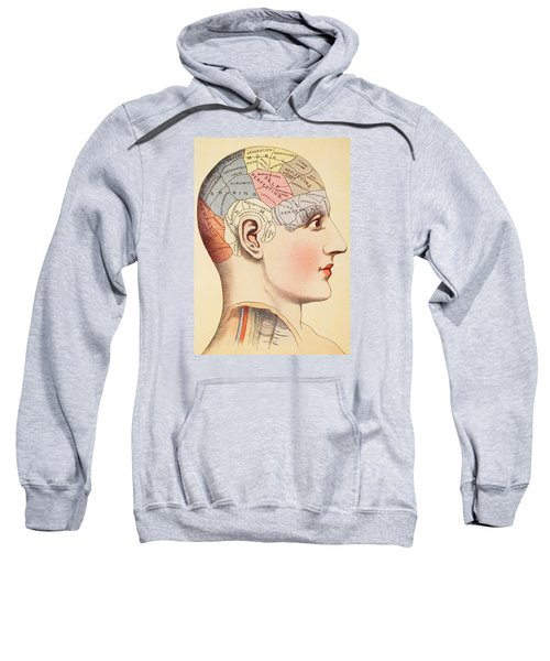 A Phrenological Map Of The Human Brain Sweatshirt