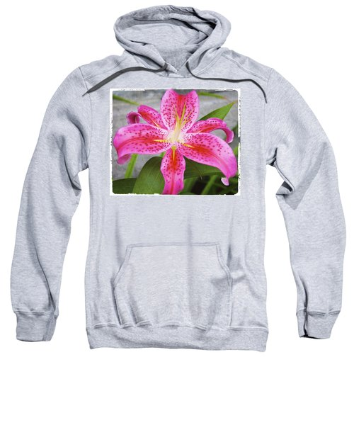 A Pink So Vivid I Can Almost Taste It Sweatshirt