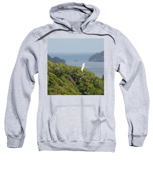 A Red-billed Tropicbird (phaethon Sweatshirt by John Edwards